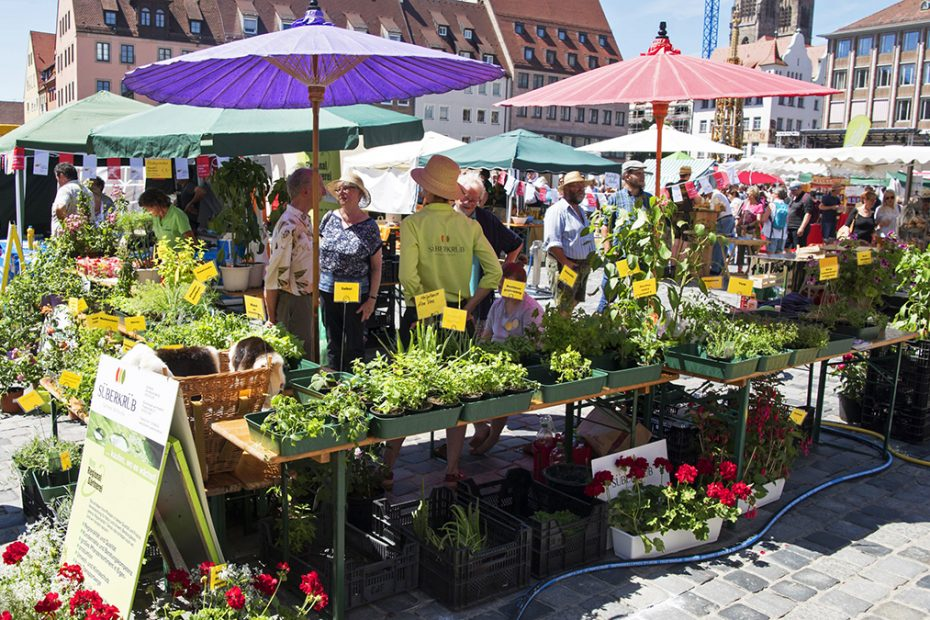 Obststand auf der Bauernmarktmeile in Nürnberg
